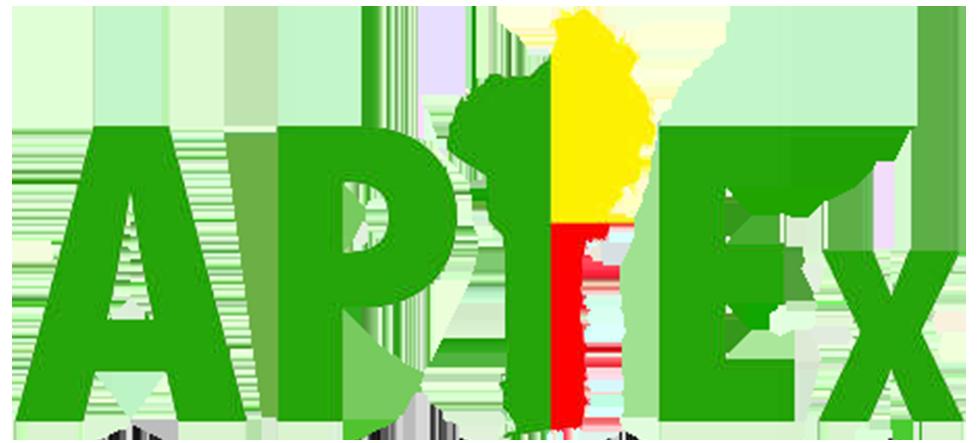 Logo APIEx