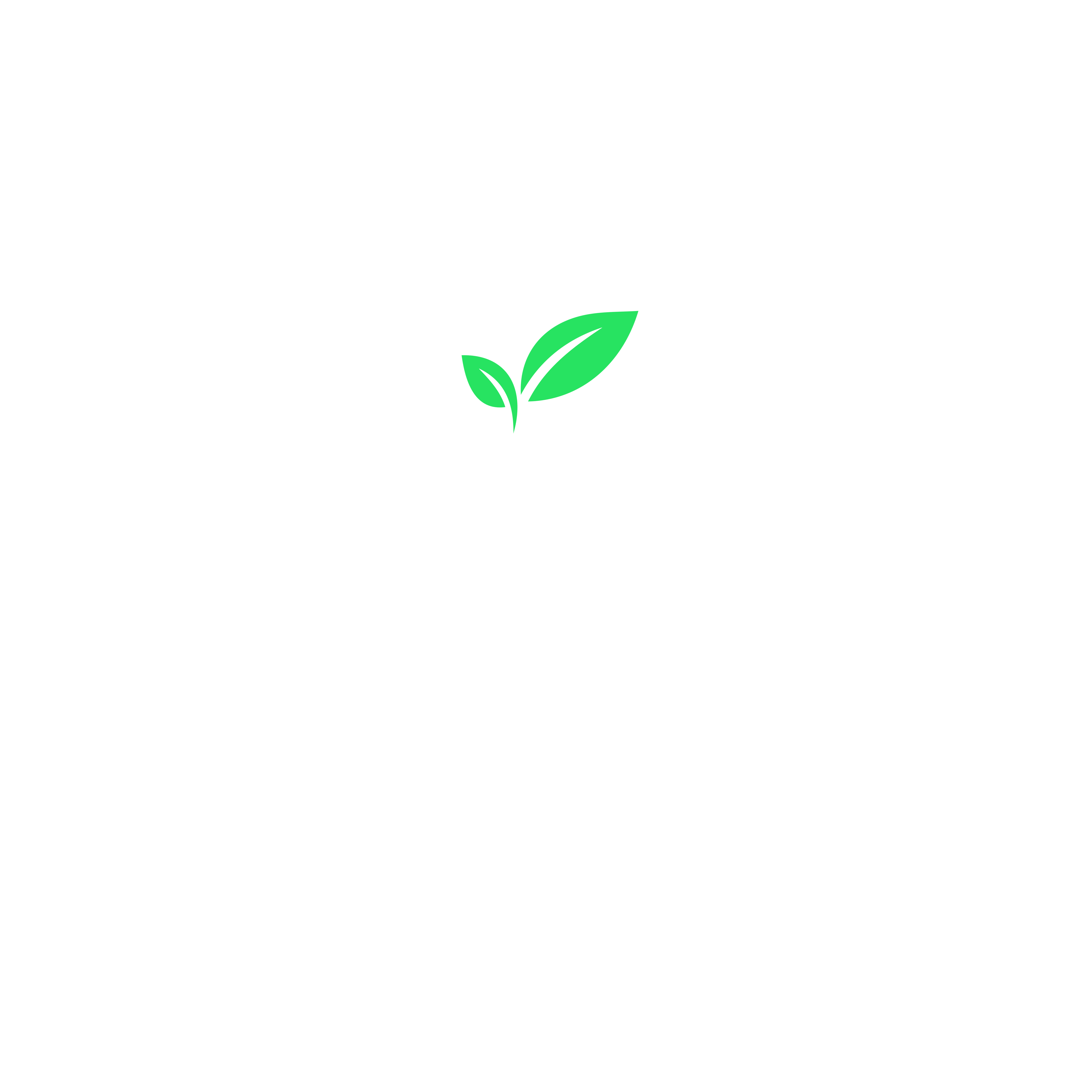 Logo blanc ESSIC